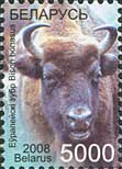 Стандарт, Зубр, мелованая бумага, 1м; 5000 руб