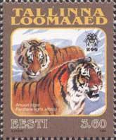 Таллиннский зоопарк, Тигр, 1м; 3.60 Кр
