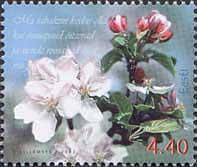 Флора, Цветы, 1м; 4.40 Кр