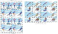 Зимние виды спорта, 2 М/Л из 4 серий