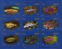 Аквариумные рыбки, М/Л из 9м; 10.0 руб х 9