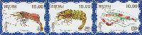 Фауна моря, 1 выпуск, Креветки, голубой фон, 3м в сцепке; 10.0 руб х 3