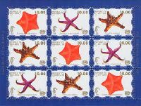 Фауна моря, 2 выпуск, Морские звезды, синий фон, М/Л из 3 серий