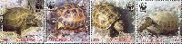 WWF, Черепахи, 4м; 70 Драм x 4
