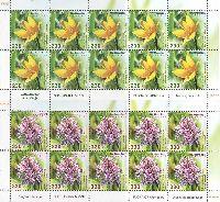 Флора Армении, Цветы, 2 М/Л из 10 серий