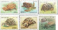 Фауна, Черепахи, 5м + блок; 50, 100, 150, 250, 300, 500 M