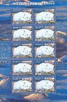 Белый медведь, М/Л из 10м; 60г x 10