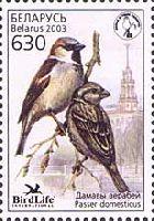 Фауна, Воробей, 1м; 630 руб