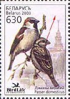 Фауна, Воробей, Ошибка, без логотипа, 1м; 630 руб