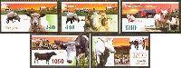 Фауна, Домашние животные; 5м; 240, 440, 500, 1050, 1500 руб