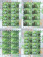 WWF, Стрекозы, 4 М/Л из 8 серий