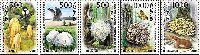 Флора, Грибы, 5м; 1000 руб х 2, 500 руб х 3