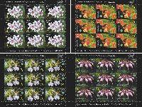 Ботанический сад, Орхидеи, 4 М/Л из 6 серий