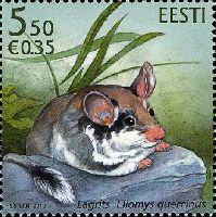 Фауна, Садовая мышь, 1м;  5.50 Кр