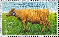 Эстонская порода крупного рогатого скота, 1м; 1.0 Евро