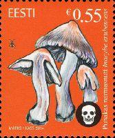 Флора, Ядовитые грибы, 1м; 0.55 Евро