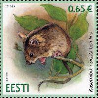 Фауна, Лесная мышовка, 1м; 0.65 Евро