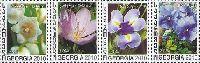 Флора, Цветы, 4м; 1.0, 1.20, 2.0, 3.0 Л