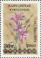 Надпечатка черного цвета нового номинала на № 019 (Цветы, 1т), 1м; 36т