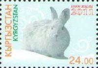 Год Кролика, 1м; 24 С