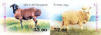 Фауна, Овцы, 2м в сцепке беззубцовые; 35.0, 52.0 C