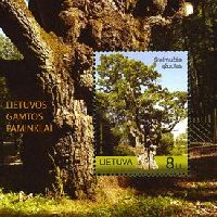 Природное наследние, Дуб Стелмуже; блок; 8.0 Литов