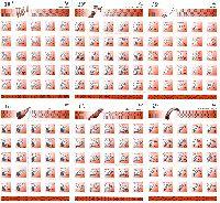 Стандарты, Музыкальные инструменты, самоклейки, 6 М/Л из 25 серий