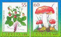 Флора, Ягоды, Грибы, 2м; 55, 60c