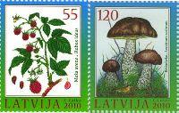 Флора, Ягоды, Грибы, 2м; 55, 120c