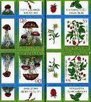 Флора, Ягоды, Грибы, тет-беш, 4м; 55, 120c x 2