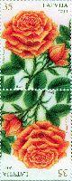 Флора, Розы, тет-беш, 2м; 35c x 2
