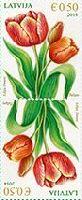 Флора, Тюльпаны, тет-беш, 2м; 0.50 Евро x 2