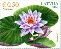 Флора, Кувшинка, 1м; 0.50 Евро