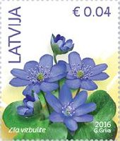 Стандарт, Цветы, 1м; 0.04 Евро