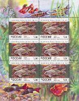 Аквариумные рыбки, М/Л из 6м; 1.0 руб x 6