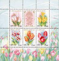 Флора, Тюльпаны, М/Л из 5м + купон; 2.0 руб х 5