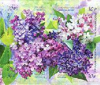 Флора России, Сирень, самоклейки, 4м в квартблоке; 30.0 руб х 4