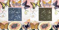 Сувенирный выпуск, Бабочки, авиапочта, 2 блока; 2500, 5000 руб