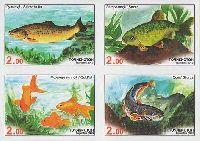 Фауна, Рыбы Азии, 4м в квартблоке беззубцовые; 2.0 C х 4