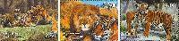 Фауна, Львы и тигры, 3м; 2.50, 3.50, 4.0 C