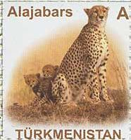 "Стандарт, Леопард, самоклейка, 1м; ""A"""