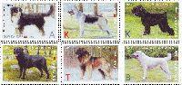 """Фауна, Собаки, 6м; """"K"""" x 3, """"А"""", """"В"""", """"Т"""""""