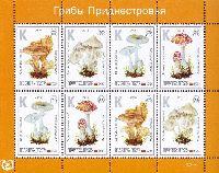 Флора, Ядовитые грибы, М/Л из 2 серий