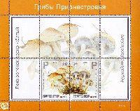 """Флора, Ядовитые грибы, блок из 2м; """"Р"""" х 2"""
